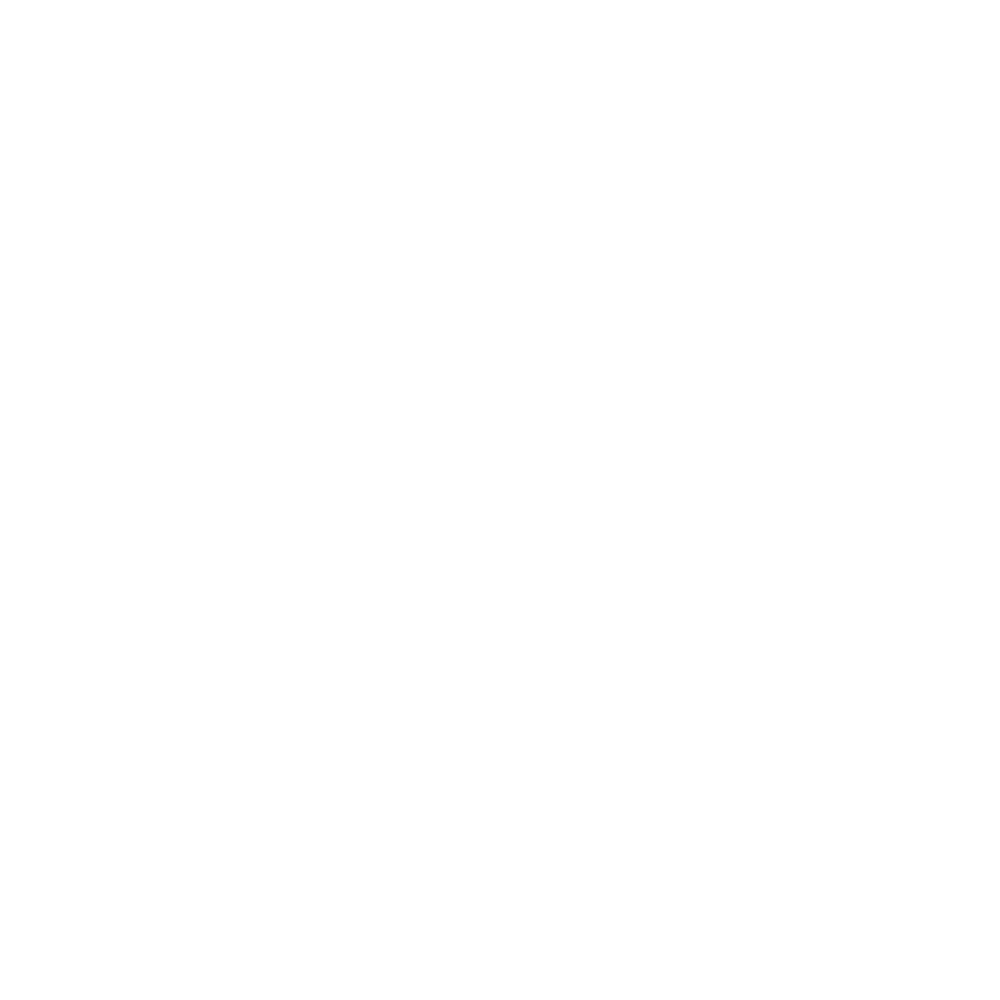 1 Year Warranty Guarantee Icon